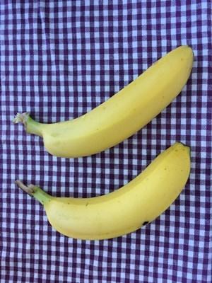 バナナの比較