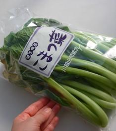 小松菜の束