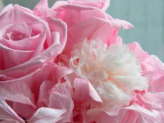 お花のクローズアップ