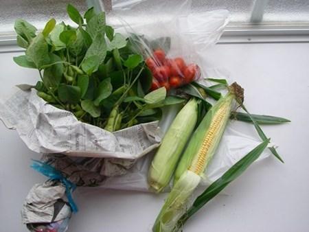 直売所の野菜