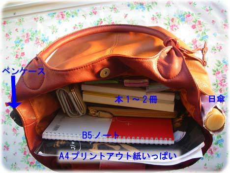 アニタアレンバーグのバッグ